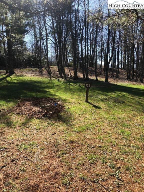 5226 Hwy 221 Highway, Blowing Rock, NC 28605 (#229532) :: Mossy Oak Properties Land and Luxury
