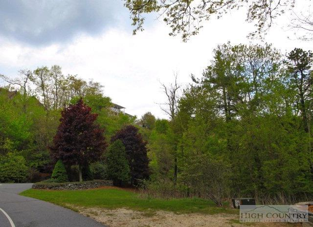 Tbd Greystone, Boone, NC 28607 (MLS #39207036) :: Keller Williams Realty - Exurbia Real Estate Group