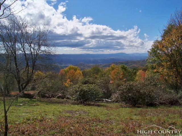 Lot T-12 Point Lookout Lane, Independence, VA 24348 (MLS #194652) :: Keller Williams Realty - Exurbia Real Estate Group