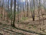 0 E 1470 Marsh Creek Rd - Photo 8