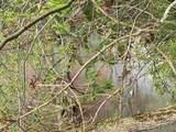 0 Meadow Creek Rd - Photo 11