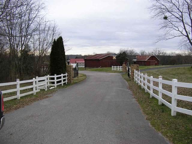 250 Phoenix Drive, Fountain Run, KY 42133 (MLS #20200748) :: Reesy Real Estate Team | Keller Williams First Choice Realty