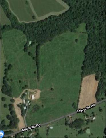 1214 Maysville Rd, Scottsville, KY 42164 (#20202028) :: The Price Group