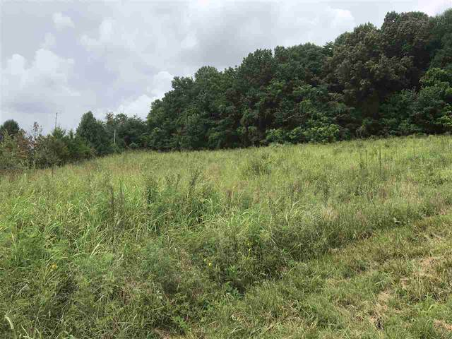 Lots 1 & 1-A Williams Lane, Scottsville, KY 42164 (MLS #20203219) :: Reesy Real Estate Team | Keller Williams First Choice Realty