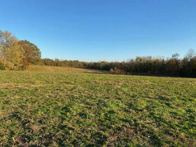 1769 Highway 218, Greensburg, KY  (#20204481) :: The Price Group