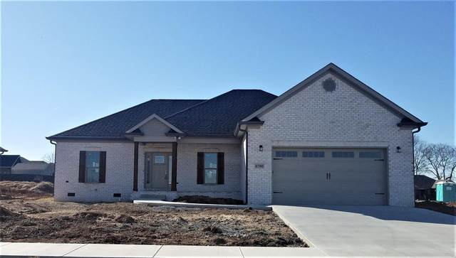 8780 Stuart Farms Avenue, Bowling Green, KY 42104 (#20204630) :: The Price Group
