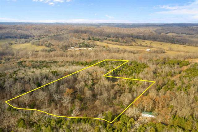 2380 Jenkins Road, Bowling Green, KY 42101 (#20204671) :: The Price Group