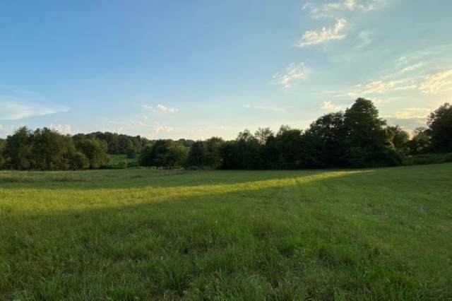 6733 Richpond Road, Bowling Green, KY 42104 (MLS #20204875) :: Reesy Real Estate Team | Keller Williams First Choice Realty