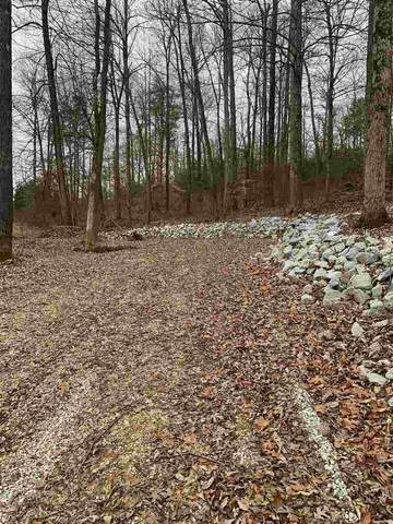 Lot 69 Canyon Run Road, Lewisburg, KY 42256 (MLS #20210272) :: Reesy Real Estate Team | Keller Williams First Choice Realty