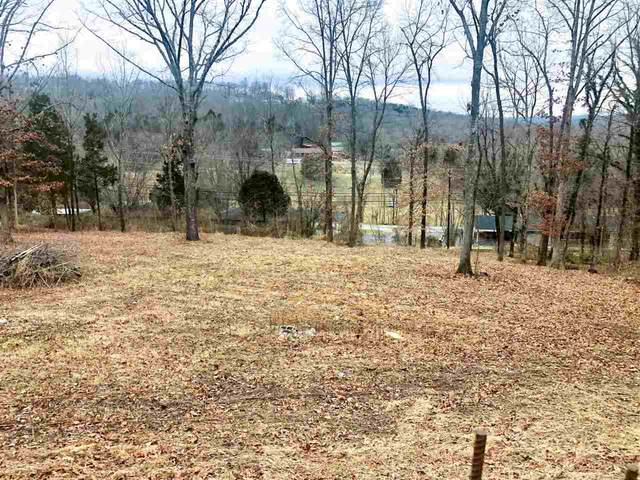 Lot 43 Ridgeview Drive, Bowling Green, KY 42101 (MLS #20210381) :: Reesy Real Estate Team   Keller Williams First Choice Realty