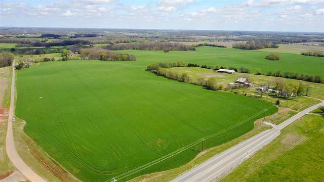 3700 Scottsville Rd, Franklin, KY 42134 (MLS #20210640) :: Reesy Real Estate Team | Keller Williams First Choice Realty