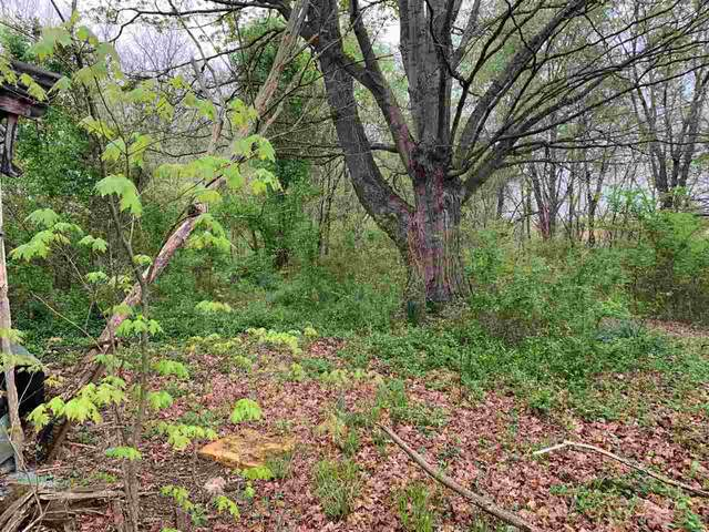 Lot Cave City Bear Wallow Road, Glasgow, KY 42127 (MLS #20211398) :: Reesy Real Estate Team | Keller Williams First Choice Realty