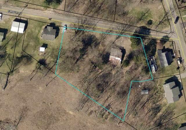 795 E Maple Street, Scottsville, KY 42164 (MLS #20211573) :: Reesy Real Estate Team | Keller Williams First Choice Realty