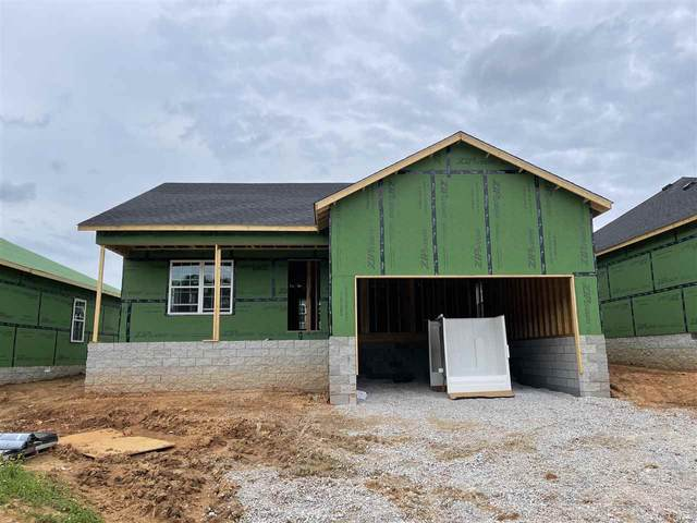 870 Mcfadin Station Street, Bowling Green, KY 42103 (#20212395) :: The Price Group