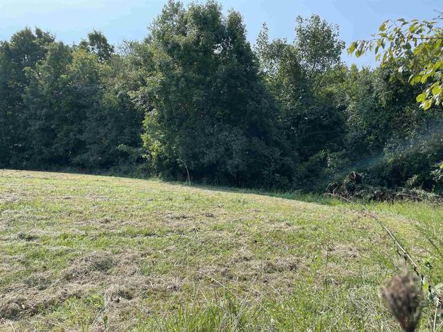 Lot 1 & 2 Borders Rd., Smiths Grove, KY 42171 (MLS #RA20214044) :: Reesy Real Estate Team | Keller Williams First Choice Realty
