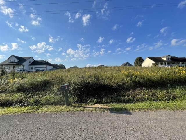 450 Guy Brown Road, Scottsville, KY 42164 (MLS #RA20214374) :: Reesy Real Estate Team   Keller Williams First Choice Realty