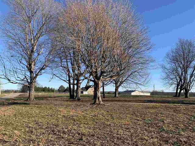 Lot 4 C W Moore Road, Smiths Grove, KY 42171 (MLS #RA20205003) :: Reesy Real Estate Team | Keller Williams First Choice Realty