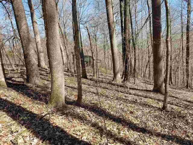 Lot 213 Quillback, Scottsville, KY 42164 (#20190840) :: The Price Group