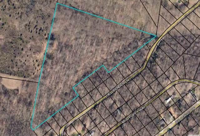 Hellbender Lane, Scottsville, KY 42164 (#20192591) :: The Price Group