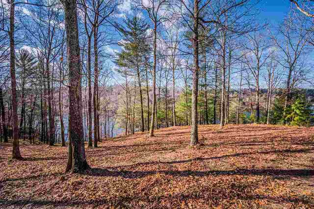 Lot 105 Canyon Run Road, Lewisburg, KY 42256 (MLS #20204537) :: Reesy Real Estate Team | Keller Williams First Choice Realty
