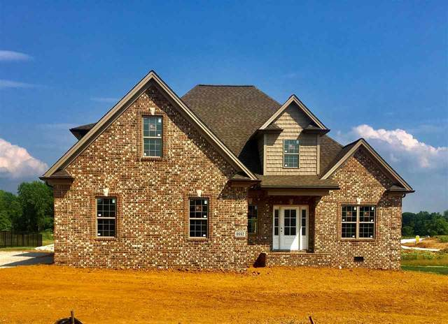 8692 Drakes Blvd, Alvaton-Bowling Green, KY 42122 (#20211299) :: The Price Group
