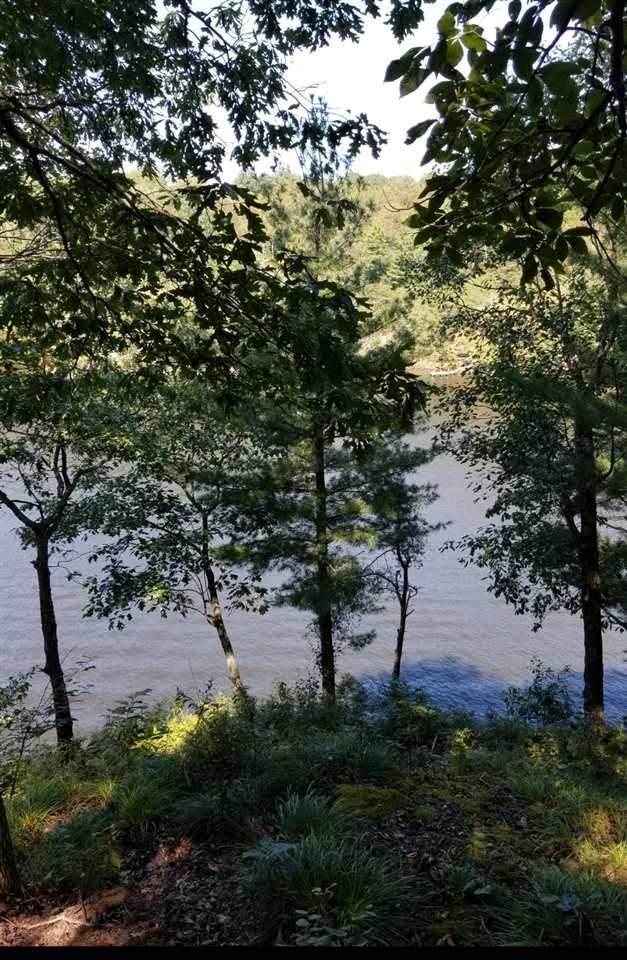 #80 & #81 Angela Way, Lewisburg Lake Malone, KY 42256 (MLS #20203736) :: Reesy Real Estate Team | Keller Williams First Choice Realty