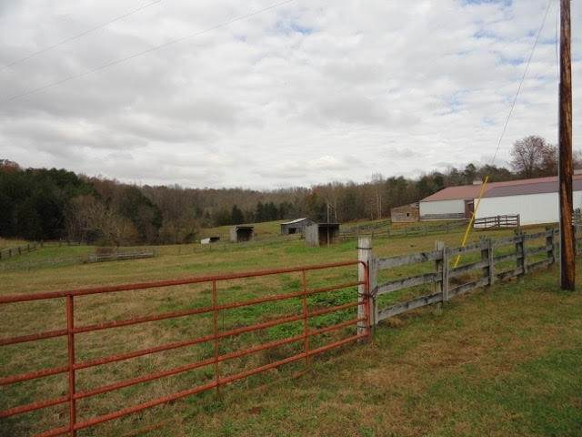 10 AC Mammoth Cave Park Road, Cave City, KY 42127 (MLS #20204902) :: Reesy Real Estate Team | Keller Williams First Choice Realty