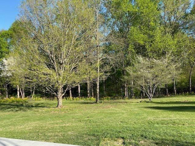 0 Brawner Road, Alvaton, KY 42122 (MLS #20204985) :: Reesy Real Estate Team   Keller Williams First Choice Realty