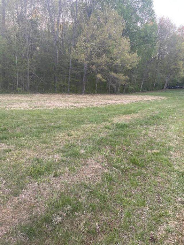 Lots 4,5 Hidden Cove Road, Lucas, KY  (MLS #20211644) :: Reesy Real Estate Team | Keller Williams First Choice Realty