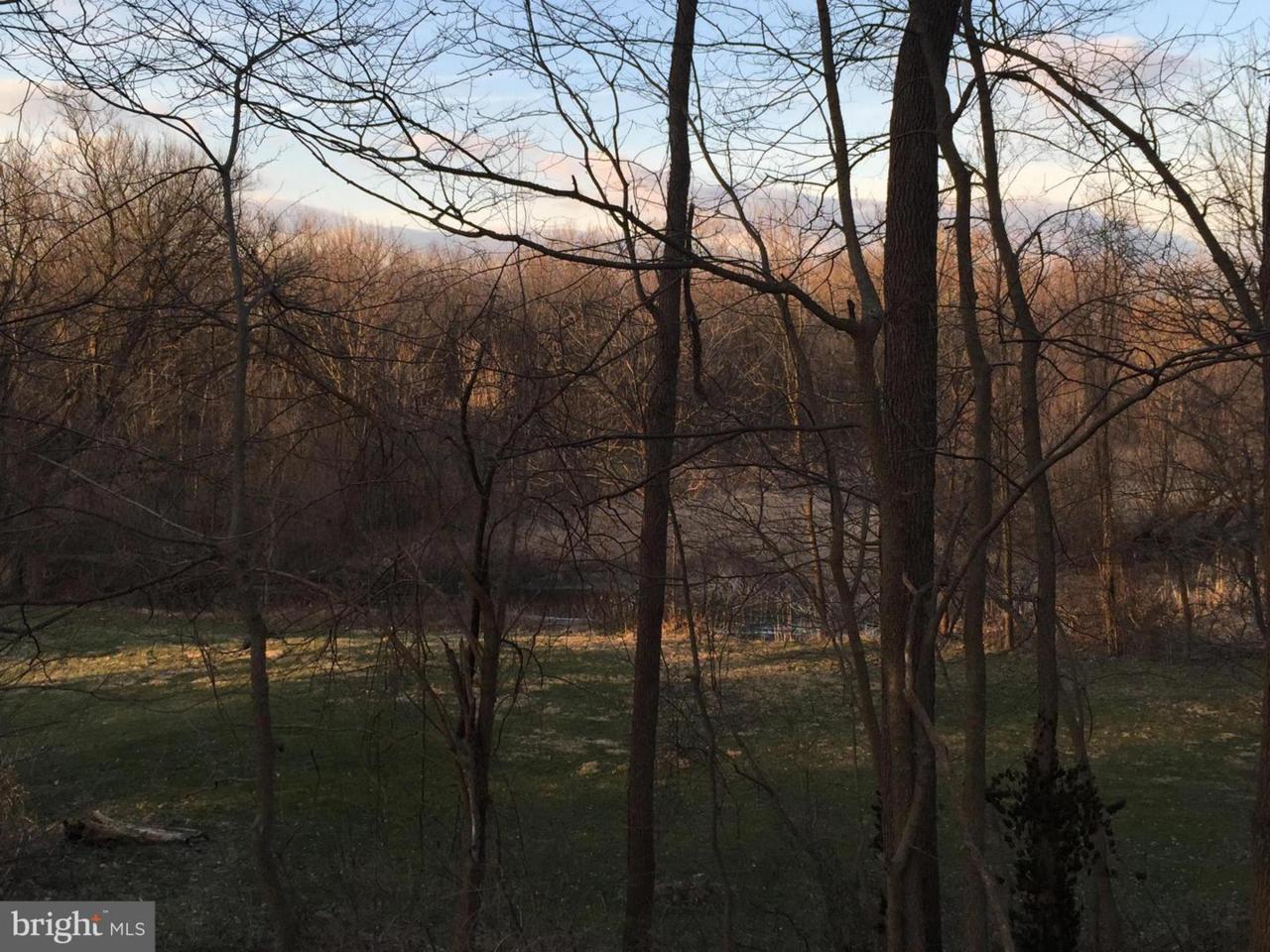Marsh Pike - Photo 1