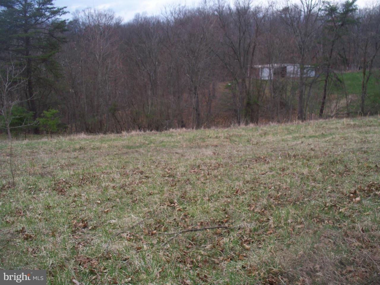 11415 Oak Tree Ridge Road - Photo 1