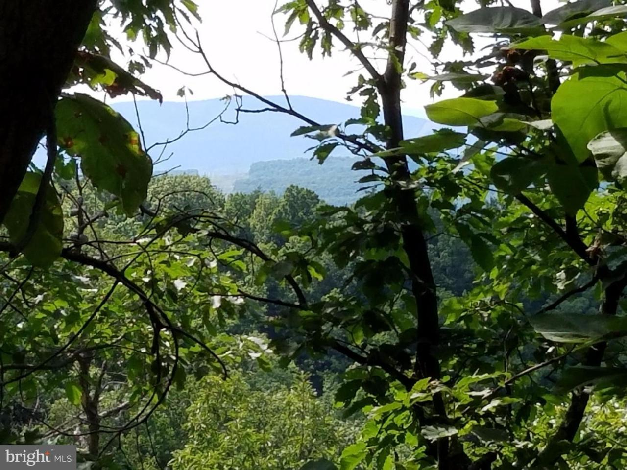 291 Ridge View - Photo 1