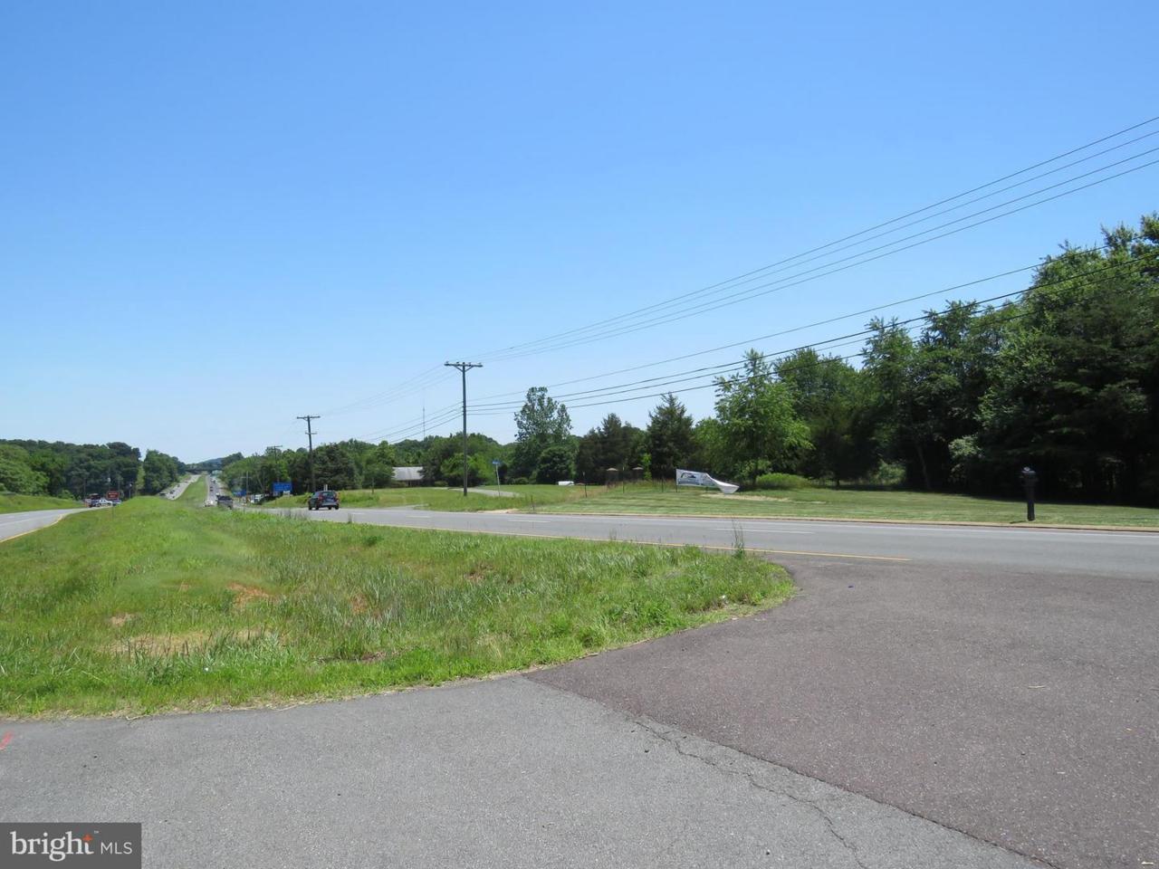 0 James Monroe Highway - Photo 1