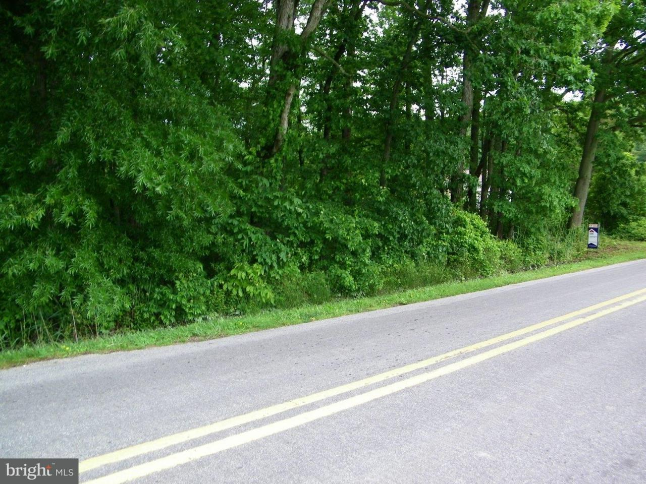 X Lynnbury Woods Road - Photo 1