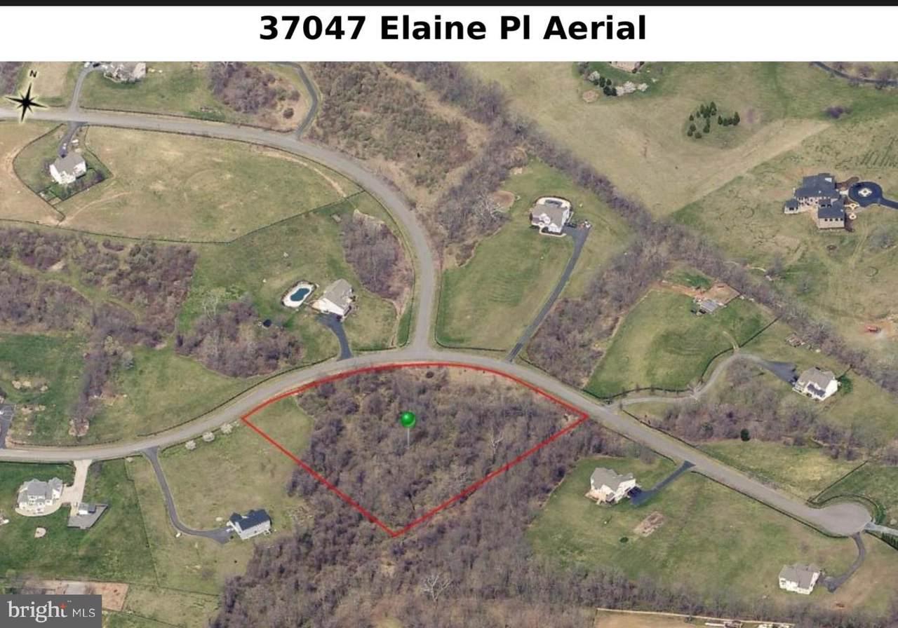 37047 Elaine Place - Photo 1