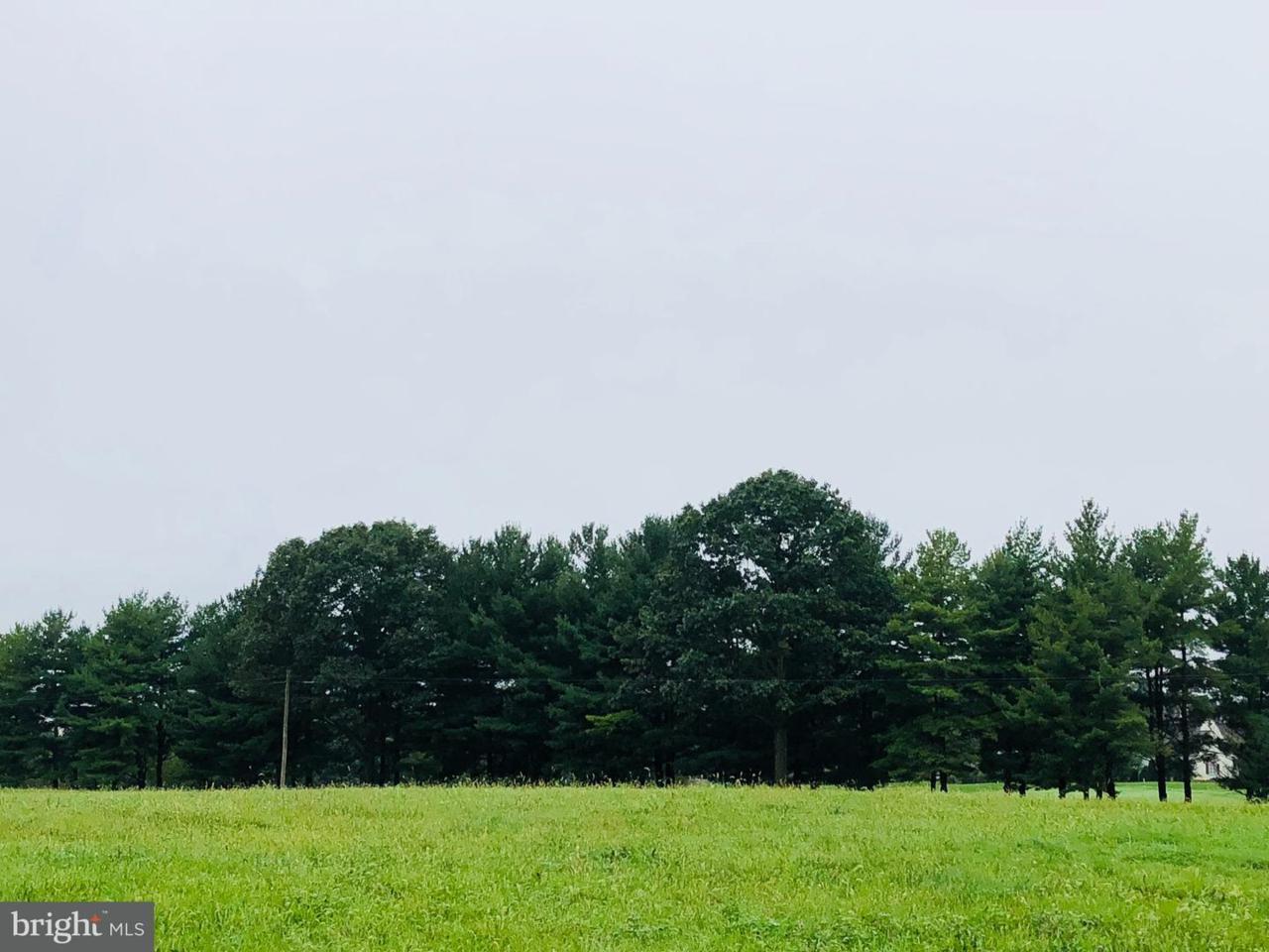 LOT 38 Honey Farm Road - Photo 1