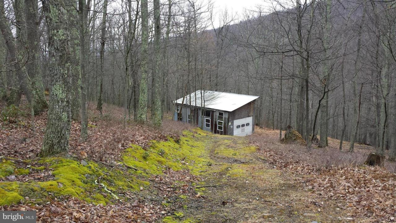 10 Off Route 220 High Knob Road - Photo 1
