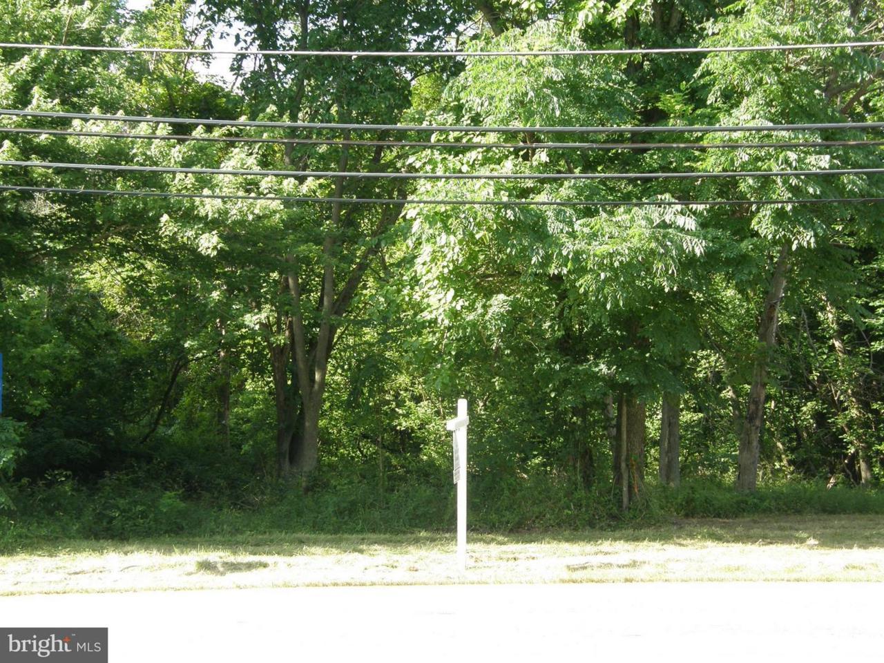 1449 Snug Harbor Road - Photo 1