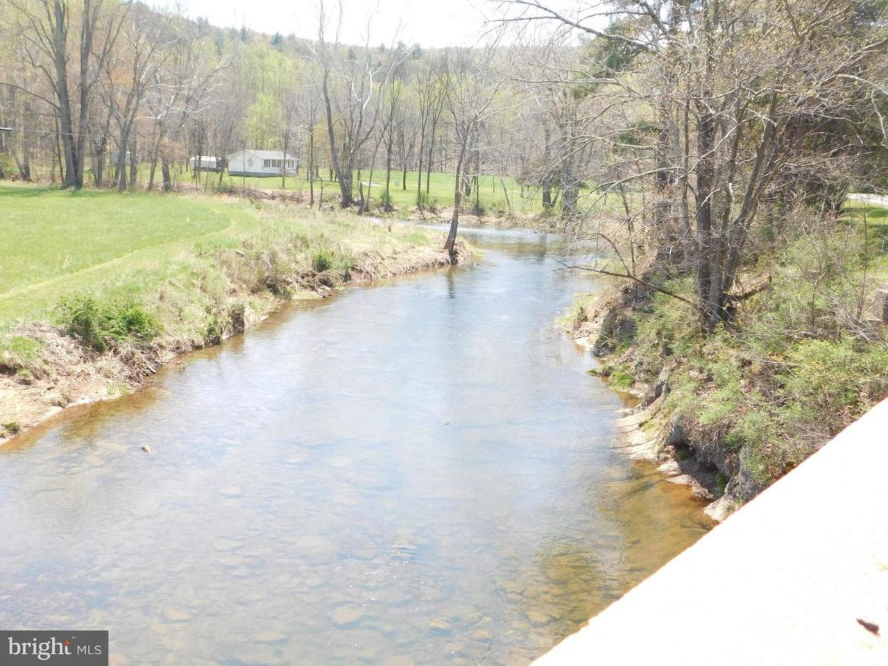 Delray Road / Wv Rt 29 South - Photo 1