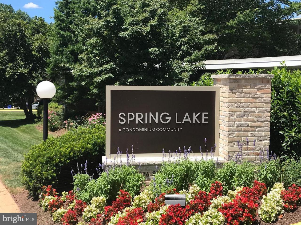 7553 Spring Lake Drive - Photo 1