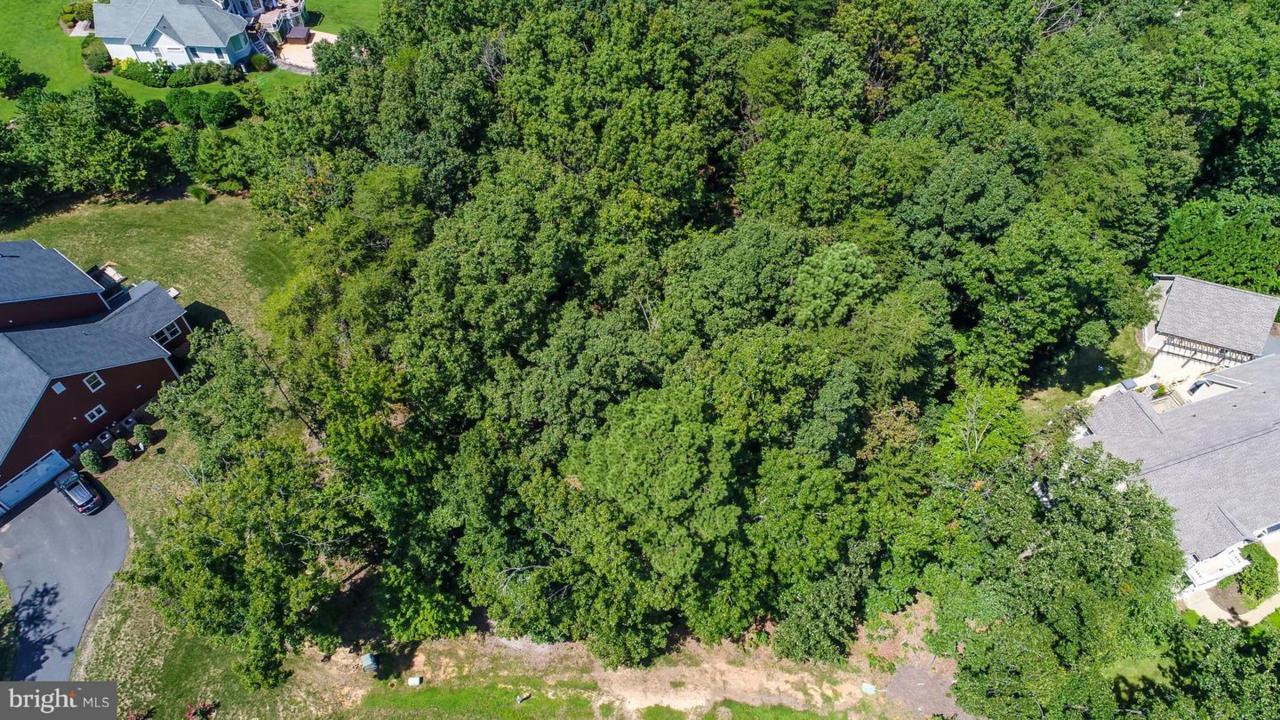 11421 Bluffs Ridge - Photo 1