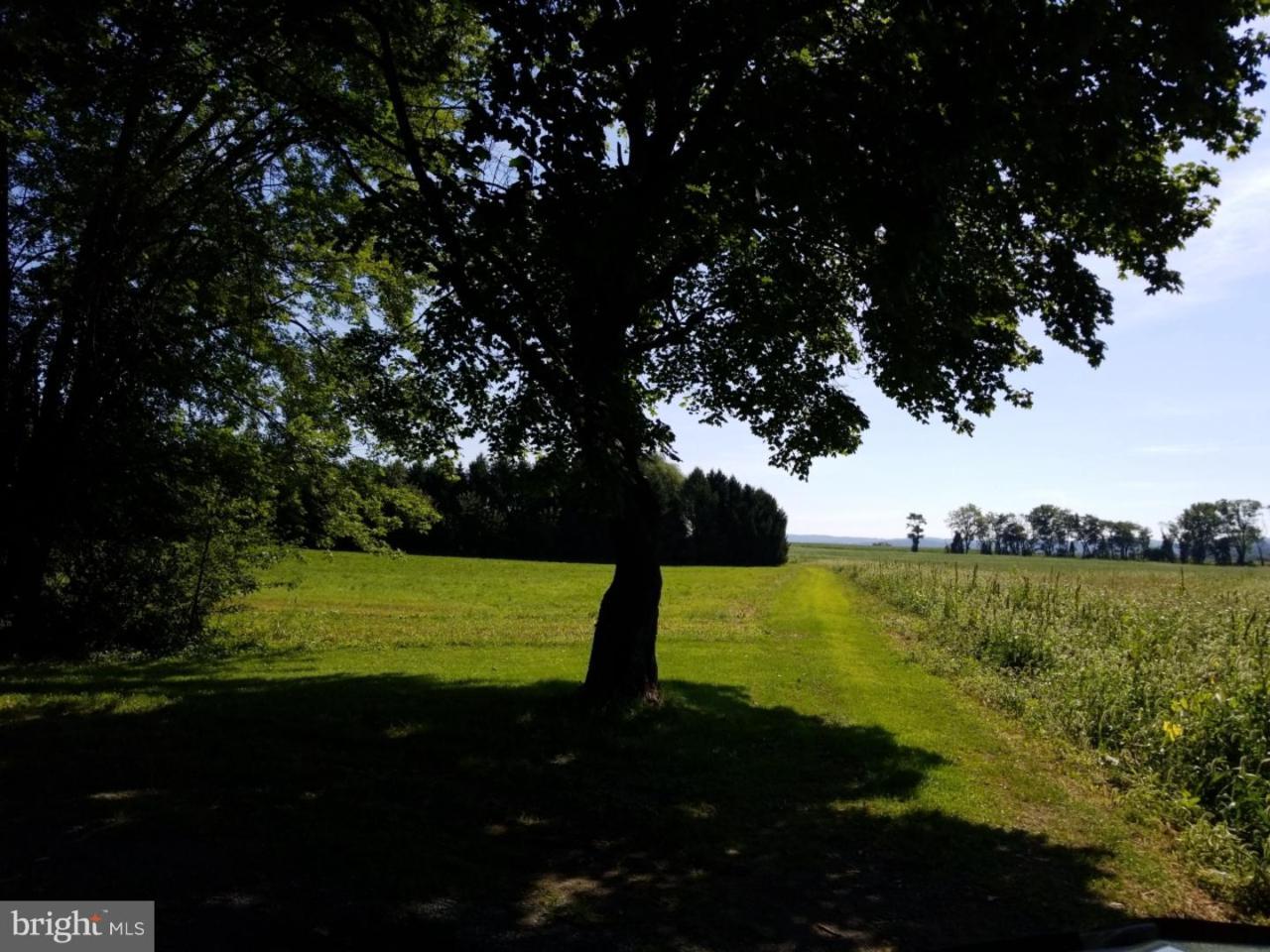 285 Linden Road - Photo 1
