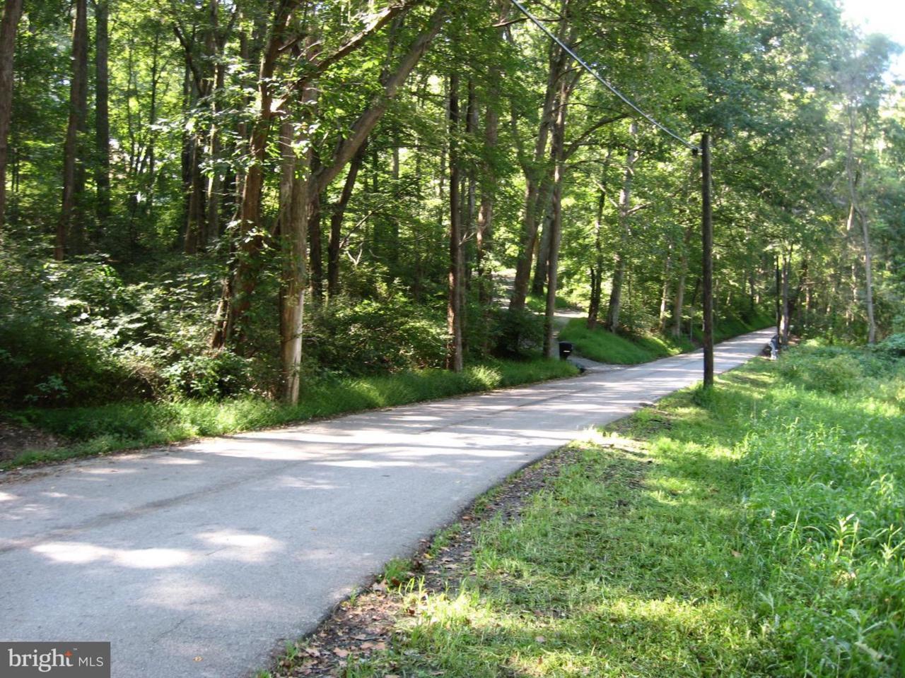 Vernon Road - Photo 1