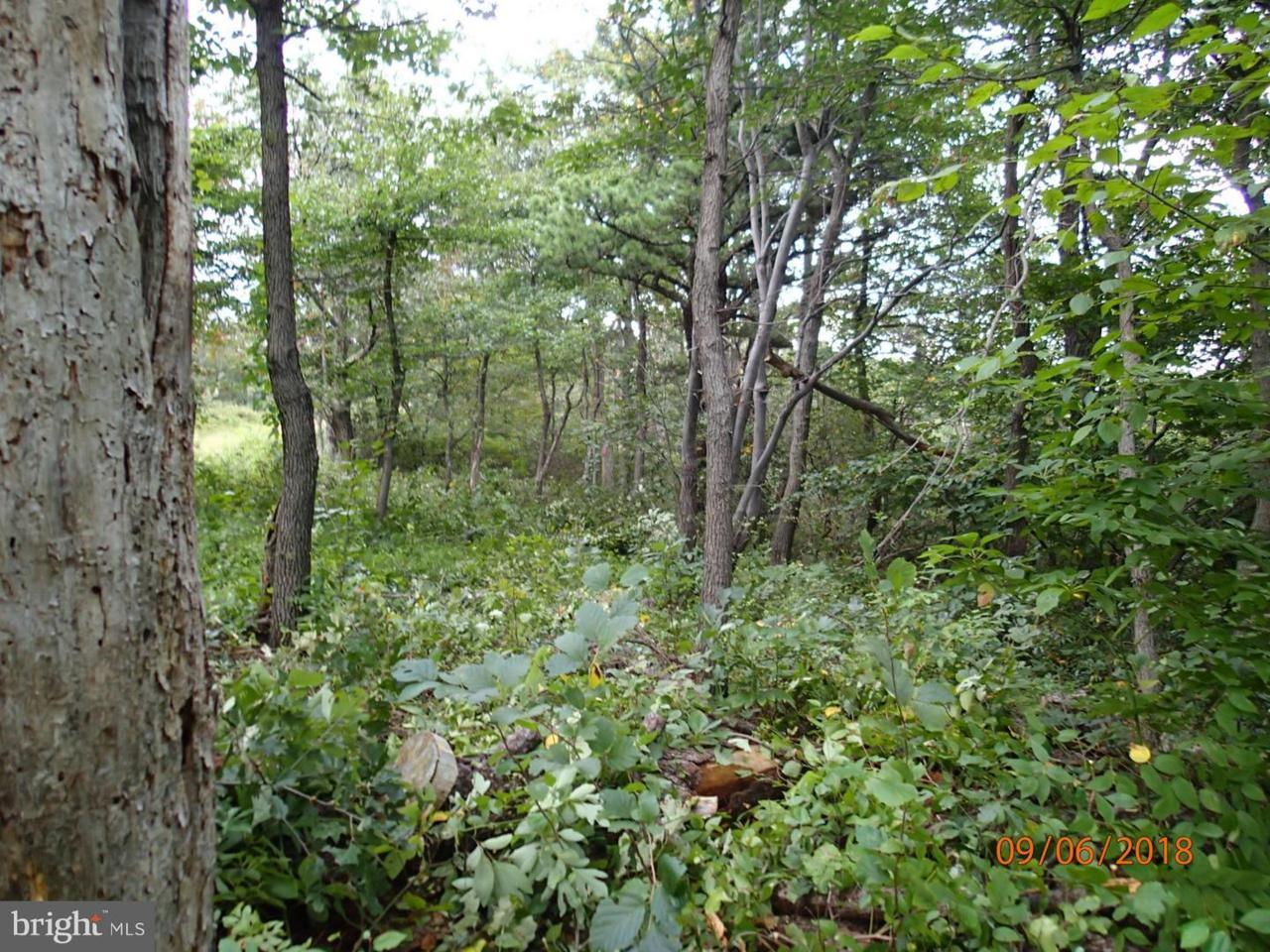 Lot 349 Archwood Trail - Photo 1