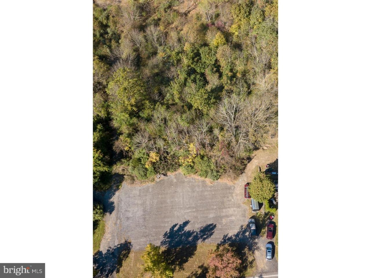 3705 Windy Bush Road - Photo 1