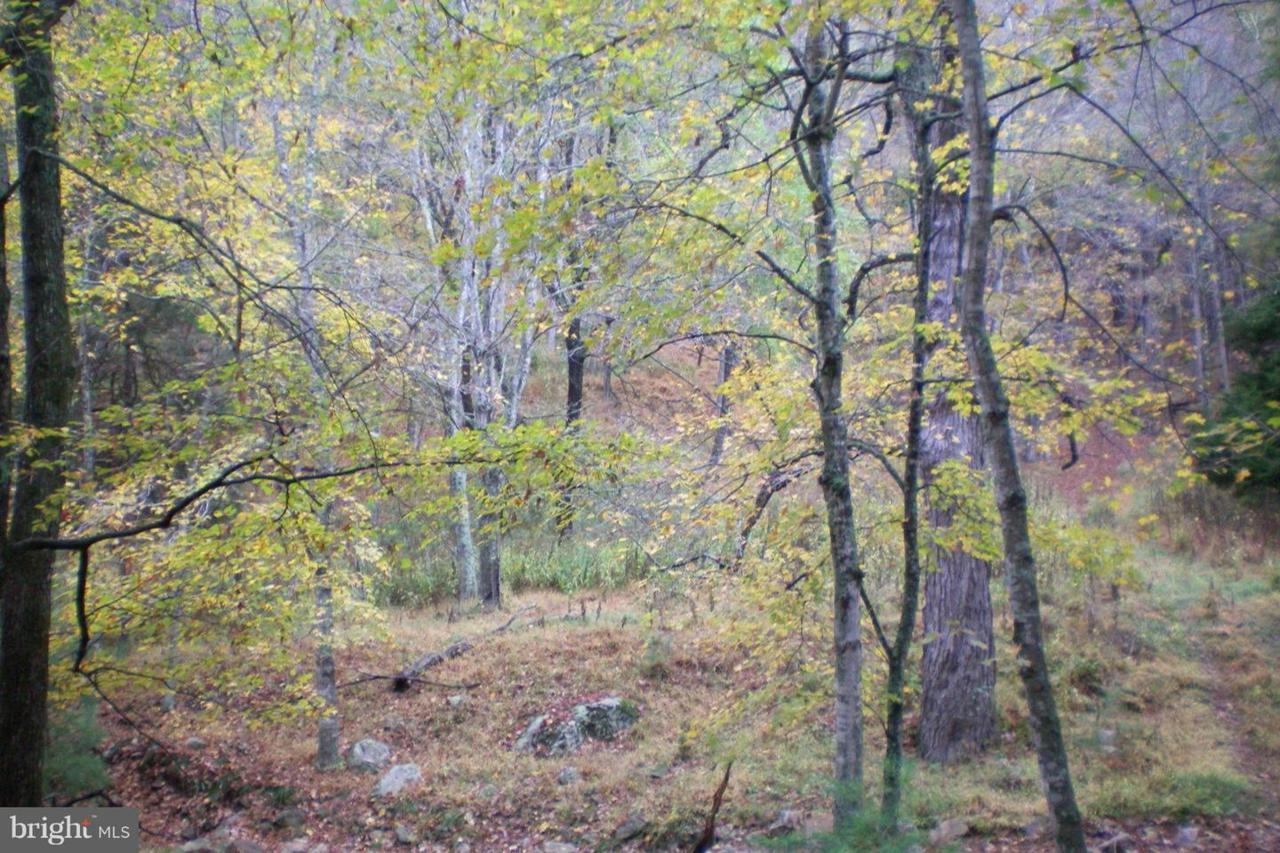 0 Dickenson Mountain Road - Photo 1