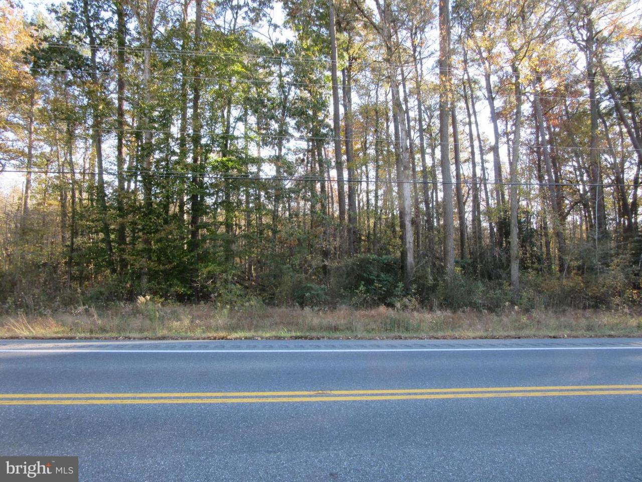 LOT 205 Deal Island Road - Photo 1