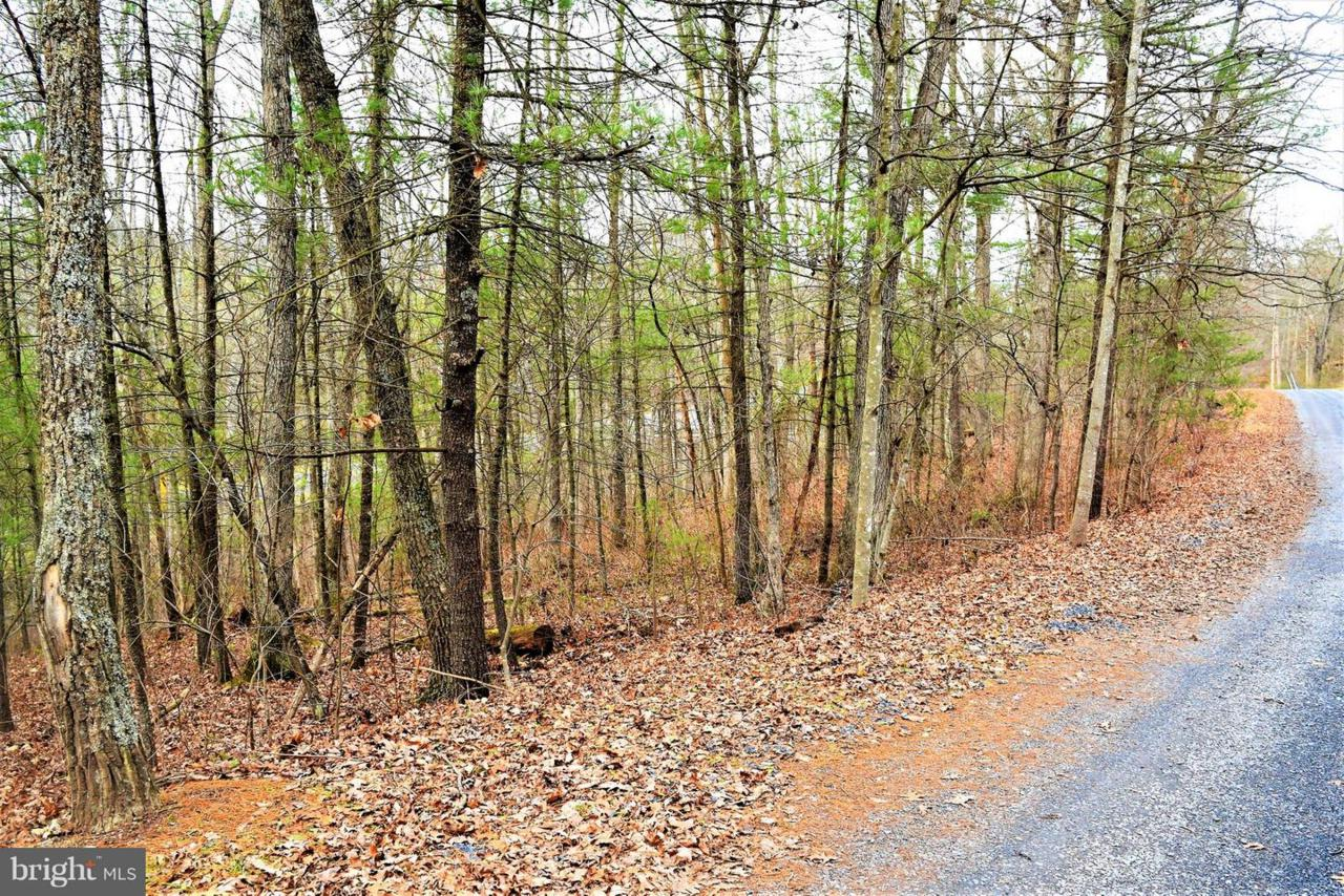 Deer Trail - Photo 1