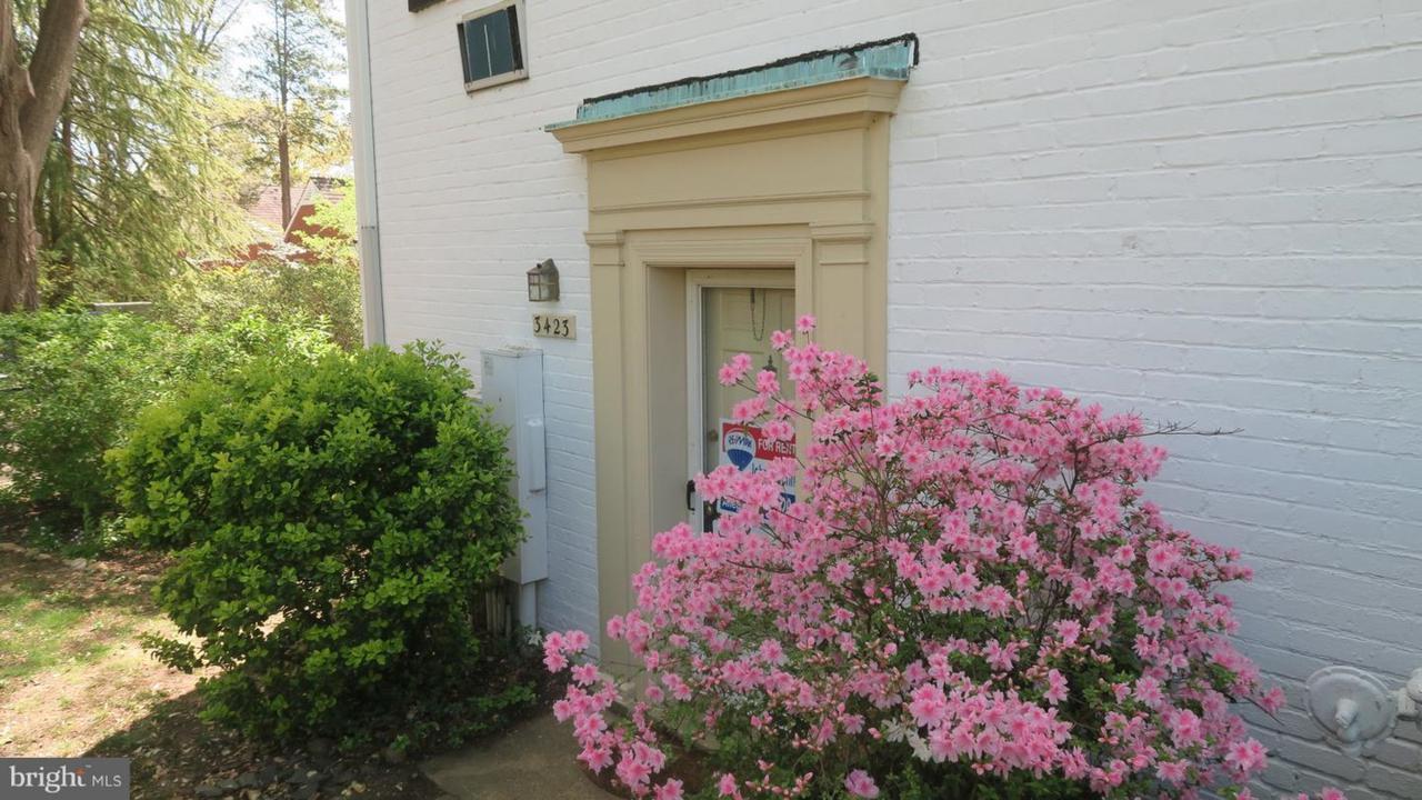 3423 Martha Custis Drive - Photo 1