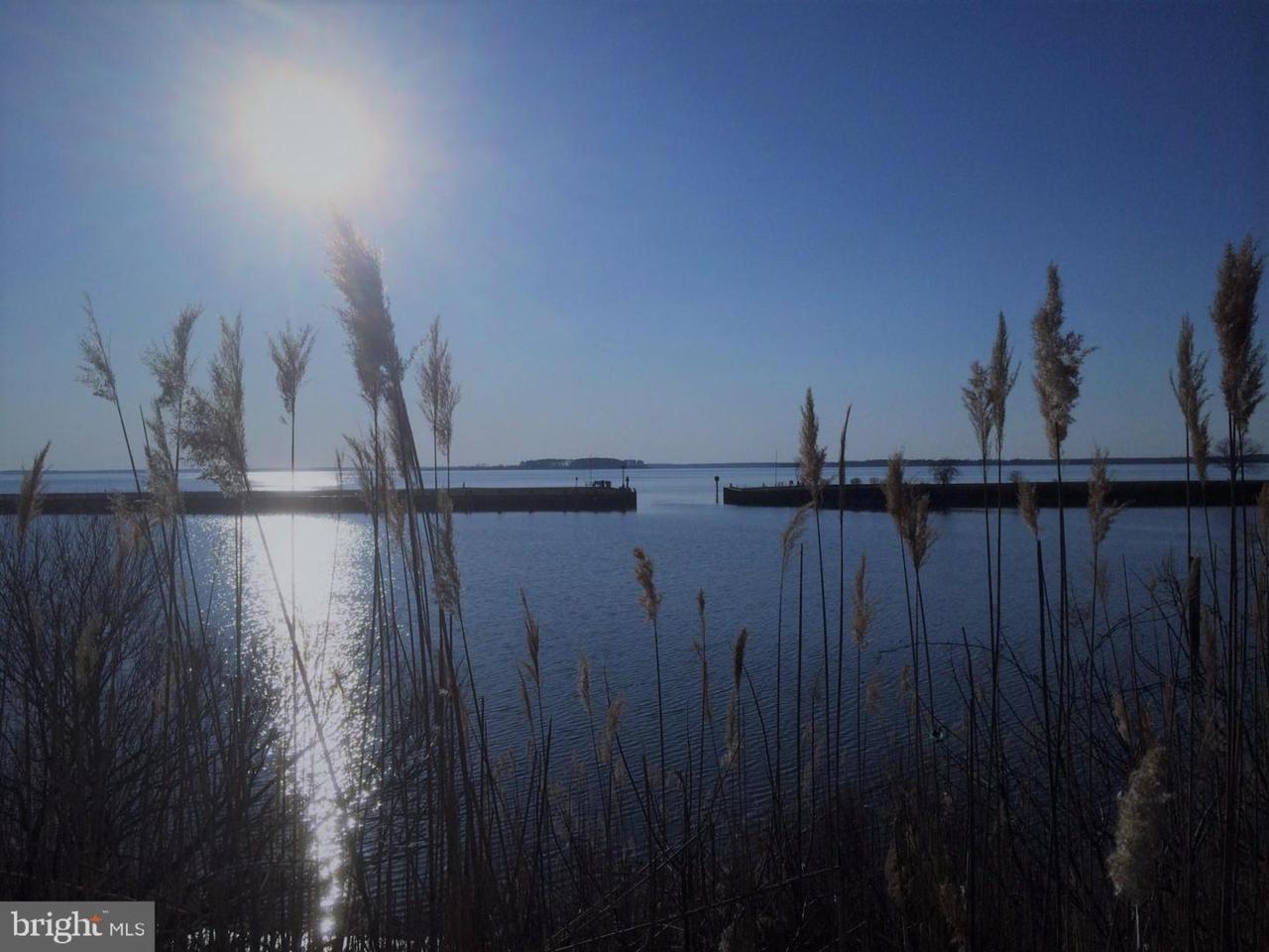 111 Prospect Bay Drive - Photo 1